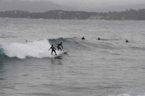 Surf sur la côte d'azur par SUZY.M 83