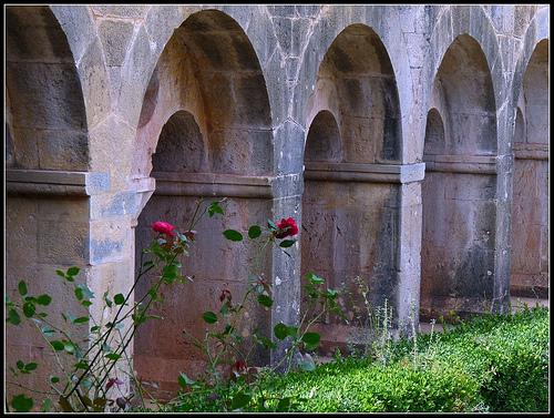 Abbaye du Thoronet par J@nine