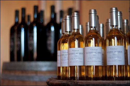 Château Font du Broc : vignoble by brunomdl