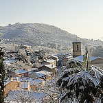 Les Arcs Snowy palm tree (Var) par csibon43 - Les Arcs 83460 Var Provence France