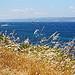 Porquerolles : l'île sauvage par kygp - Porquerolles 83400 Var Provence France