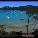 Var - Porquerolles : le paradis accessible qu'en bateau by g_dubois_fr - Porquerolles 83400 Var Provence France