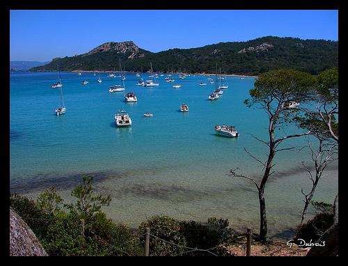 Var - Porquerolles : le paradis accessible qu'en bateau par g_dubois_fr