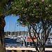 Port de porquerolles par Anhariel - Porquerolles 83400 Var Provence France