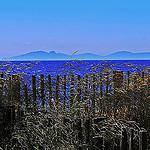 Île de Porquerolles par  - Porquerolles 83400 Var Provence France