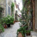 Ruelle fleurie by Niouz - Ramatuelle 83350 Var Provence France