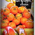 Tomates en grappes - Extra par Beriadan - Ramatuelle 83350 Var Provence France