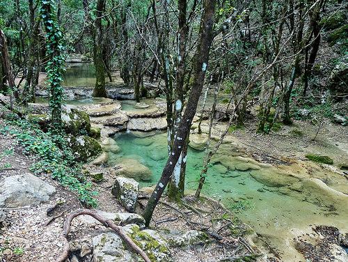Les sources du fleuve de l'Huveaune par JeeMkac66