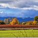 Couleurs d'Automne assurément - Var par Charlottess - Seillons Source d'Argens 83470 Var Provence France