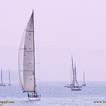 Sailing in Saint-Trope Golf par Belles Images by Sandra A. - St. Tropez 83990 Var Provence France