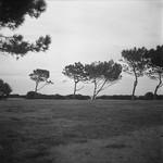 Cap des salins par maru teru - St. Tropez 83990 Var Provence France