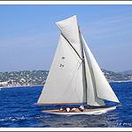Les régates de Saint-Tropez by PUIGSERVER JEAN PIERRE - St. Tropez 83990 Var Provence France