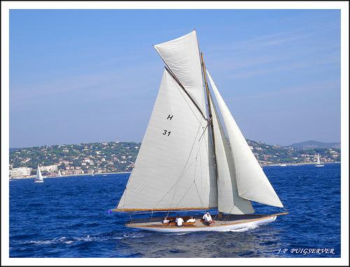 Les régates de Saint-Tropez by PUIGSERVER JEAN PIERRE