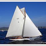 Les régates de Saint-Tropez : voilier de tradition par PUIGSERVER JEAN PIERRE - St. Tropez 83990 Var Provence France