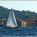 Les voiles de Saint-Tropez : La course se termine.... par myvalleylil1 - St. Tropez 83990 Var Provence France