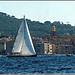 Les voiles de Saint-Tropez : La course se termine.... by myvalleylil1 - St. Tropez 83990 Var Provence France