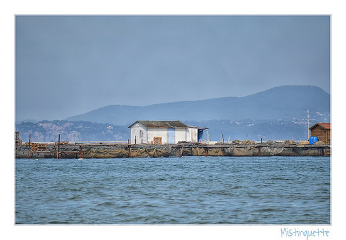 Baie des Tamaris - Fishing hut by mistinguette.mistinguette
