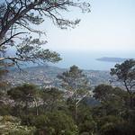 Vue sur Toulon et la presqu'île de Saint-Mandrier by  - Toulon 83000 Var Provence France