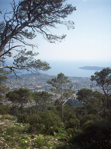 Vue sur Toulon et la presqu'île de Saint-Mandrier by Only Tradition