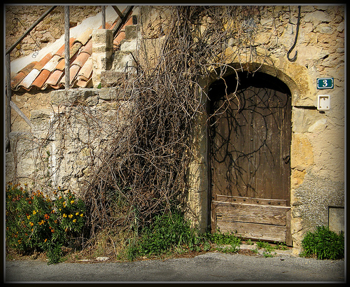 Porte rustique by myvalleylil1