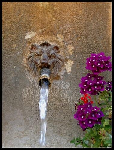 Varages - Détail de la fontaine du Baou par Renaud Sape