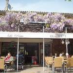 Glycine en fleur. Café Le Paris, Place de l'Hôtel de Ville, Vidauban, Var. by Only Tradition - Vidauban 83550 Var Provence France