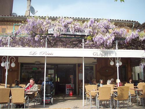 Glycine en fleur. Café Le Paris, Place de l'Hôtel de Ville, Vidauban, Var. par Only Tradition