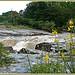 Cascades sur l'Aille par myvalleylil1 - Vidauban 83550 Var Provence France