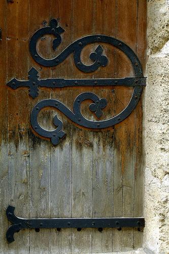 Porte médiévale - La mue par krissdefremicourt