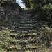 Vieil escalier de pierres moussues par  - Apt 84400 Vaucluse Provence France