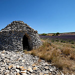 Lavandes et borie près d'Aurel par Rémi Avignon - Aurel 84390 Vaucluse Provence France