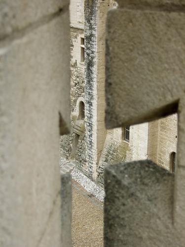 Entrevue... dans les secrets du Palais des papes par Umeline