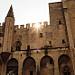 Palais des papes d'Avignon - créneaux par José Schettini Sobrinho - Avignon 84000 Vaucluse Provence France