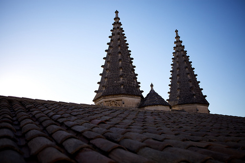 Roof of the Palace of the Popes par casey487