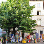 Arbres à Avignon  by Huiling Chang - Avignon 84000 Vaucluse Provence France