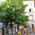 Arbres à Avignon  par Huiling Chang - Avignon 84000 Vaucluse Provence France