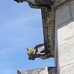 Gargouilles du Palais des Papes by  - Avignon 84000 Vaucluse Provence France