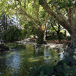 Jardin du rocher des Doms... un petit paradis à découvrir par  - Avignon 84000 Vaucluse Provence France