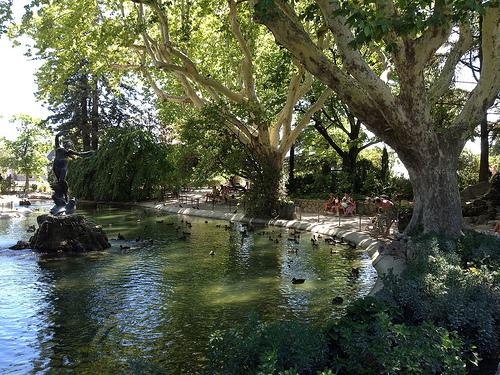 Jardin du rocher des doms un petit paradis d couvrir for Rocher decoratif pour jardin