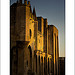 Palais des Papes Avignon par Laurent2Couesbouc - Avignon 84000 Vaucluse Provence France