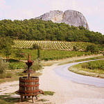 """Beaumes de Venise"" Vineyards by Sokleine - Beaumes de Venise 84190 Vaucluse Provence France"
