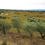 Vue depuis Beaumes de Venise par Toño del Barrio - Beaumes de Venise 84190 Vaucluse Provence France