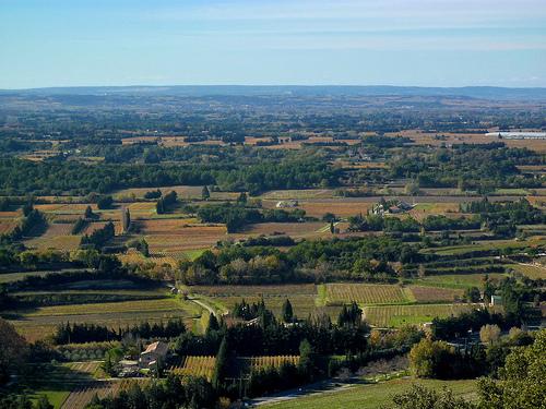 Vue sur la plaine du Comtat-comtat Venaissin  by Toño del Barrio