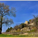 Abandon - Beaumes-de-Venise (84) by Charlottess - Beaumes de Venise 84190 Vaucluse Provence France