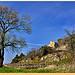 Abandon - Beaumes-de-Venise (84) par Charlottess - Beaumes de Venise 84190 Vaucluse Provence France