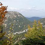 Aux environs du col du comté par Christophe Guay - Beaumont du Ventoux 84340 Vaucluse Provence France