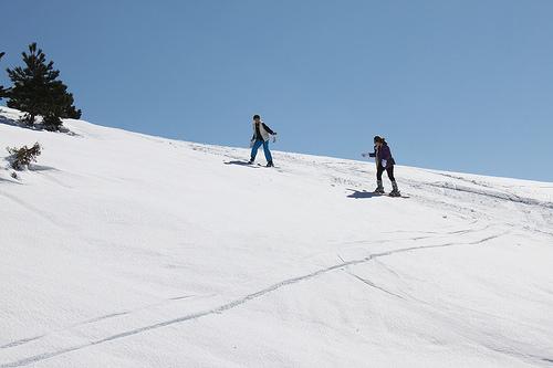 Ski sur les pistes autour du Chalet Reynard par gab113