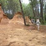 Demoiselles coiffées de Bedoin par gab113 - Bédoin 84410 Vaucluse Provence France
