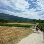 Ballade à Cheval au pied du Mont-Ventoux par gab113 - Bédoin 84410 Vaucluse Provence France