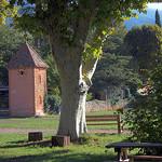 Invitation to relaxation par Sokleine - Bédoin 84410 Vaucluse Provence France